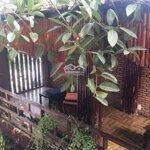 Cho thuê quán cafe siêu đẹp, cơ hội kinh doanh quá tốt cho các nhà đầu tư