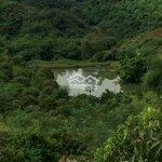 đất rừng sản xuất cao răm lương sơn hòa bình