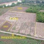 Huyện diên khánh 18.0000m² đất trồng cây hàng năm
