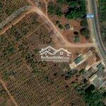 Cho thuê đất từ 1000-10000 m2