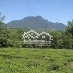 đất bất động sản ba vì 1.850m²