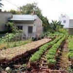 Bán miếng đất rẻ hơn xung quanh 2 triệu/m2