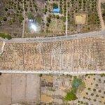 đầu tư bất động sản đất nền diên hòa chỉ từ 125 triệu