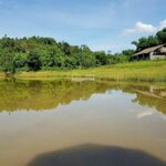 Cần bán 5000m view hồ tại lương sơn hòa bình