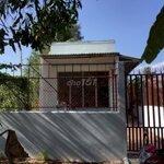Nhà cho thuê nguyên căn lộ thầy cai, tp bến tre