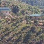 Cho thuê đất thổ cư nông nghiệp có nhà ở