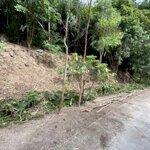 Bán đất mặt tiền đường quanh đảo nam du, kiên giang, 1187m2, 4 tỷ, t08/2020