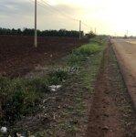 Bán gấp đất nông ngiệpdiện tích5600m2sổ hồng chính chủ