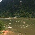Cần chuyển nhượng 32,5ha có 2ha đất vườn 400m2 đất ở lâu dài viêw hồ núi đá phong cảnh hữu tình