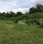 Bán 2 Công Ruộng Ở Bình Phú Càng Long