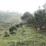 Trang Trại 15Ha View Đỉnh Ở Thị Trấn Lương Sơn Giá Chỉ Vài Tỷ. Liên Hệ: 0943.346.523/ 0352.066.978