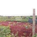 đất làm trang trại, và năng lượng ea kênh krông pắ