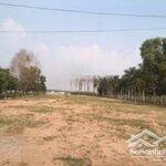 Chính chủ bán đất 1000m2 thị trấn chơn thành, đường 13m, shr, công chứng ngay, 0906756858