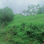Bán đất kỳ sơn hòa bình cách đường cao tốc 3km. diện tích 8000m2 400m ont ô tô 45 chỗ vào tận đất.