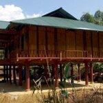 Cần bán nhà sàn tại bản phong châu, xã pa ham, huyện mường chà, điện biên