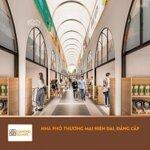 Bán gấp lô kiot (cửa hàng) trung tâm thương mại bồng sơn liên hệ chủ đầu tư 0902.900.413