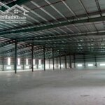 Cho thuê xưởng 7000m2 mới tinh trong cụm công nghiệp tại cẩm giàng, hải dương