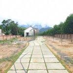 Cần bán 1000m2 đất ở tại xã hòa ninh thuận tiện làm nhà vườn trang trại nghĩ dưỡng