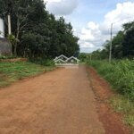 Cần bán 2ha đất mặt tiền đường nhựa bên cạnh trạm y tế đạo nghĩa, đẳkrlấp, đăk nông