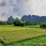 Cần bán lô đất 3.000m view cánh đồng, view núi siêu đẹp tại lương sơn - hòa bình.