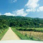Nhanh tay sở hữu 1400m2 đất đẹp liên sơn, lương sơn, hoà bình.