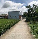 đất cần bán đất thổ cư thị trấn thủ thừa 1.040m²