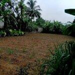 Ngân hàng xử lý đất trống 372m2 tại mặt đường hồ chí minh, lương sơn, hòa bình
