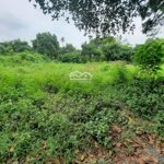 Chính chủ cần tiền bán gấp 4500m2 đất hòa sơn,lương sơn, hb, view đẹp, đất cao thoáng, giá rẻ.