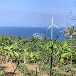 Em kẹt tiền nên cần bán đất view bao quát biển, vị trí đẹp, siêu đầu tư 300 nghìn/m2 đảo phú quý