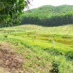 Cần bán 1100m2 có 400m2 đất ở dưới chân núi bà nà thuận tiện làm villa nhà vườn nghỉ dưỡng