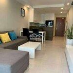 Cho thuê chung cư sunrise cty, cty view quận 7