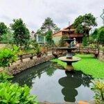 Cho thuê sân vườn rộng thiết kế thoáng đẹp 2000m gần ngã tư cầu mới. liên hệ: 0973 010209 hương