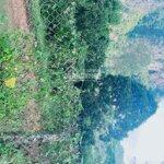 Bán gấp 2850m2 có 400m2 thổ cư, cao phong, đất bằng phẳng, có ao, sát suối, hiện đang trồng cam, di