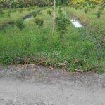 đất huyện phong điền 300m2