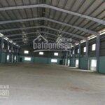 Bán kho xưởng mới 1254m2, đường container an phú đông quận 12
