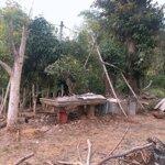 Bán nhà vườn, khu sinh thái 1ha tại tp buôn ma thuột