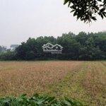 đất sinh thái sóc sơn, 7400m2, giá chỉ 4.3 tỷ | 0969716339