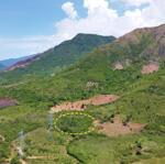 Chính chủ bán lô đất rẫy vườn 5812 m2 trên đất có vườn cây ăn trái.