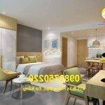 Cho thuê căn hộ cao cấp giá chỉ 4 triệu