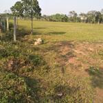 Bán đất nghỉ dưỡng trồng cây 7.2k m2