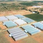 đất tại bình tân bắc bình thuận giá chỉ 65.000đ/m2 sổ hồng làm trang trại