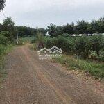 đất huyện trảng bom đang trồng cao su 10.000m²