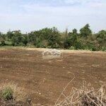 đất suối nho định quán đồng nai, sát suối 12m
