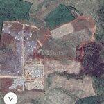 3,5 hecho thuêa đất cln sông phan hàm tân