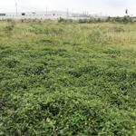 Bán đất công nghiệp xây kho xưởng cụm việt tiến – huyện việt yên 10.000m2. giá siêu rẻ.