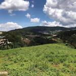 Bán lô đất xây dựng view tuyệt đẹp măng lin - p7 - đà lạt