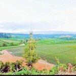 Bán đất view cực đẹp tại xã dambri. 2000m2_1,5 tỷ