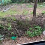 Bán đất mặt tiền đường Tôn Thất Sơn Thủy Phương Hương Thủy Huế