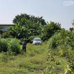 Chính chủ cần bán đất tại Đường ĐT 823- Xã Đức Lập Hạ- Đức Hòa- Long An