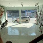 Cần bán nhà đất tổ 10 noong bua, tp điện biên phủ, điện biên